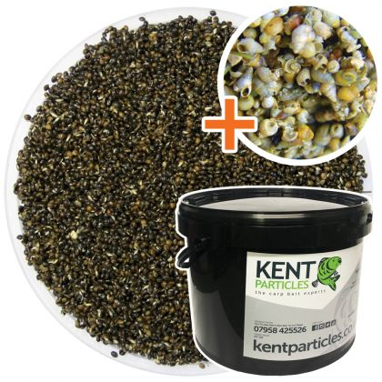 Kent Particles Prepared Hemp & Snails: click to enlarge