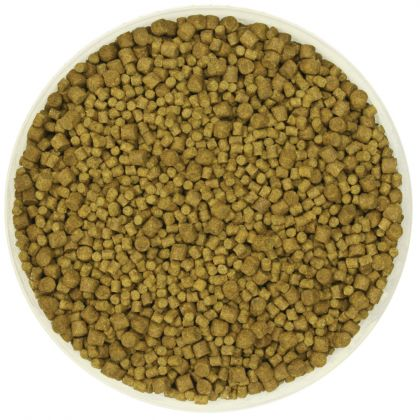 Kent Particles Mixed Carp Pellet: click to enlarge