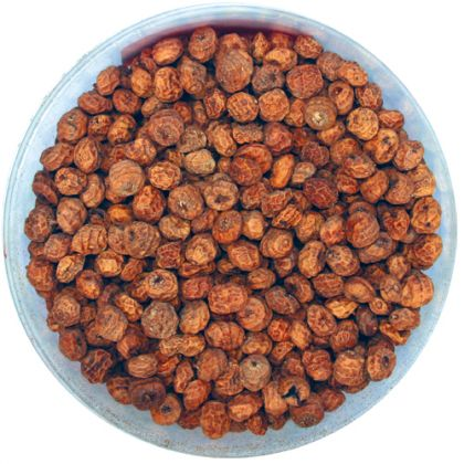 Kent Particles Dry Large Tiger Nuts: click to enlarge